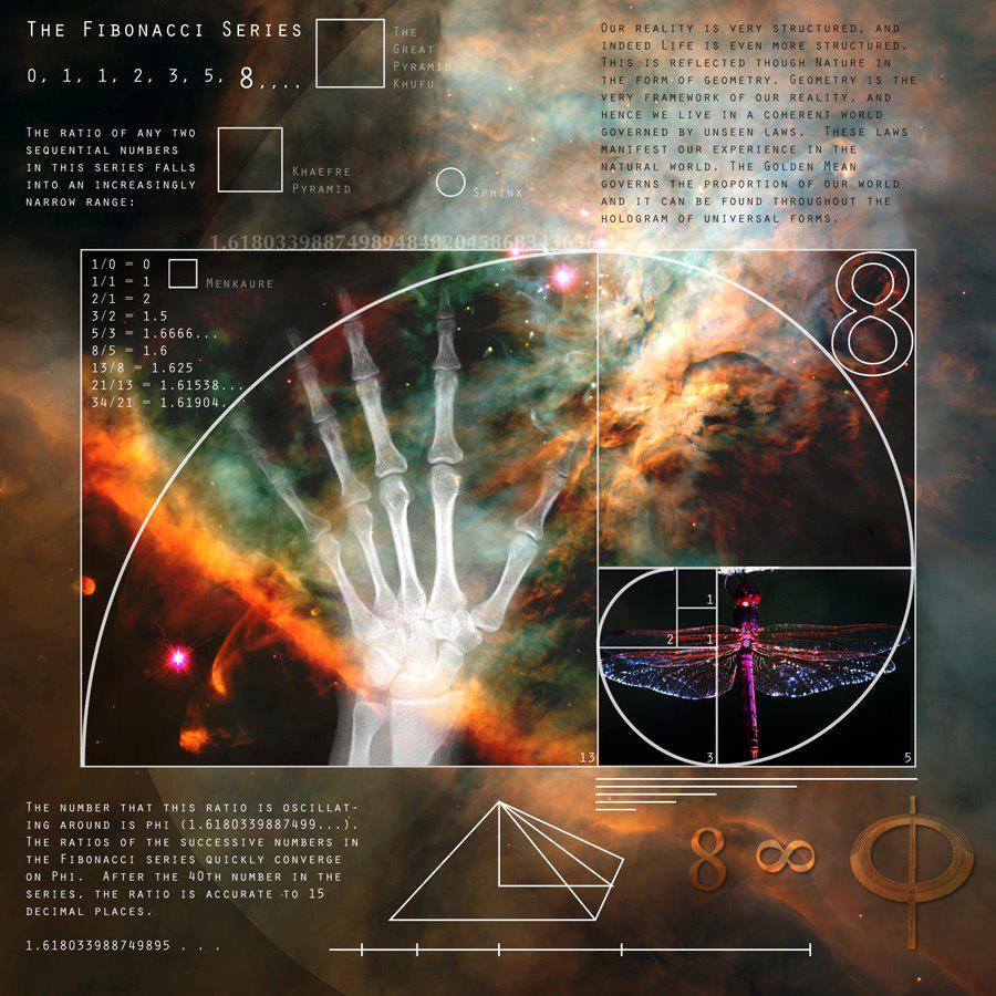 Последовательность Фибоначчи... или Золотое Сечение... Отпечаток реальности...