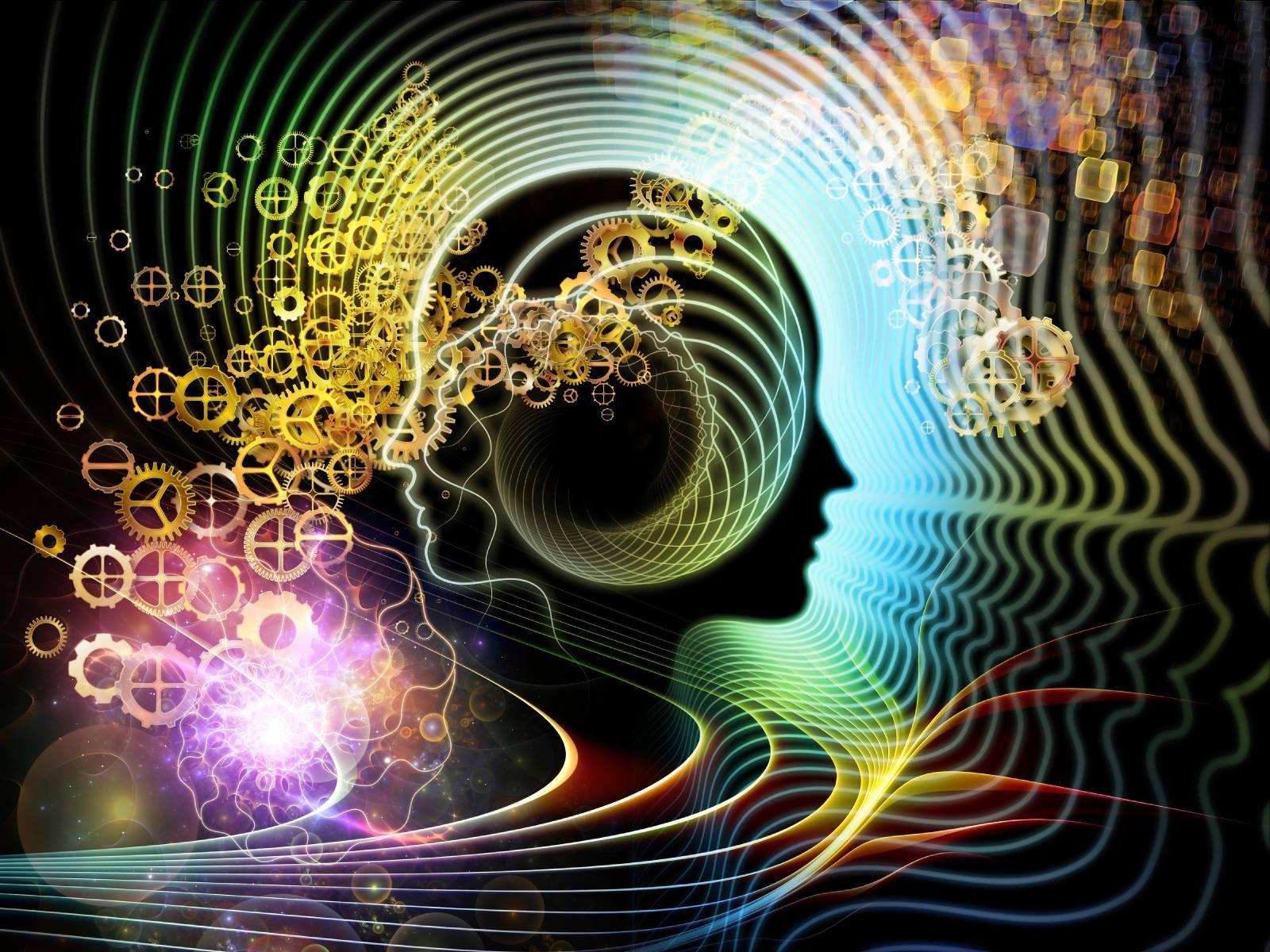 Качество жизни — результат активности мозга